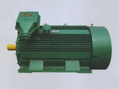 YB2系列高压隔爆型三相异步电动机10KV